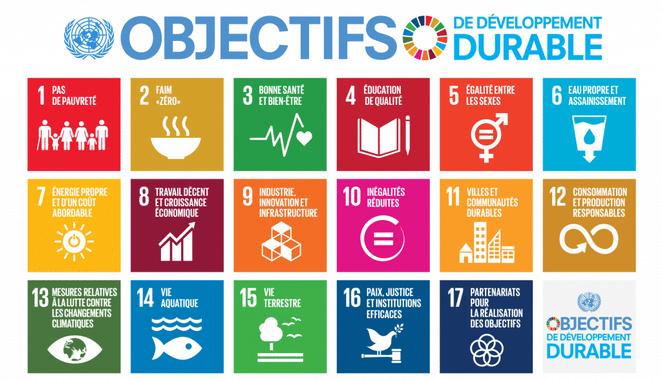 Les objectifs de développement durable fixés par l'OMS
